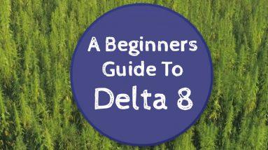 delta 8 beginners guide